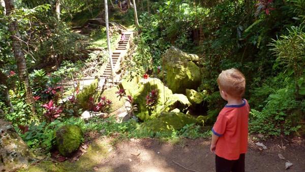 elephant cave gardens