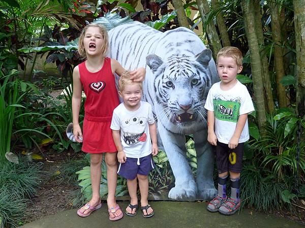 White Tiger in Bali