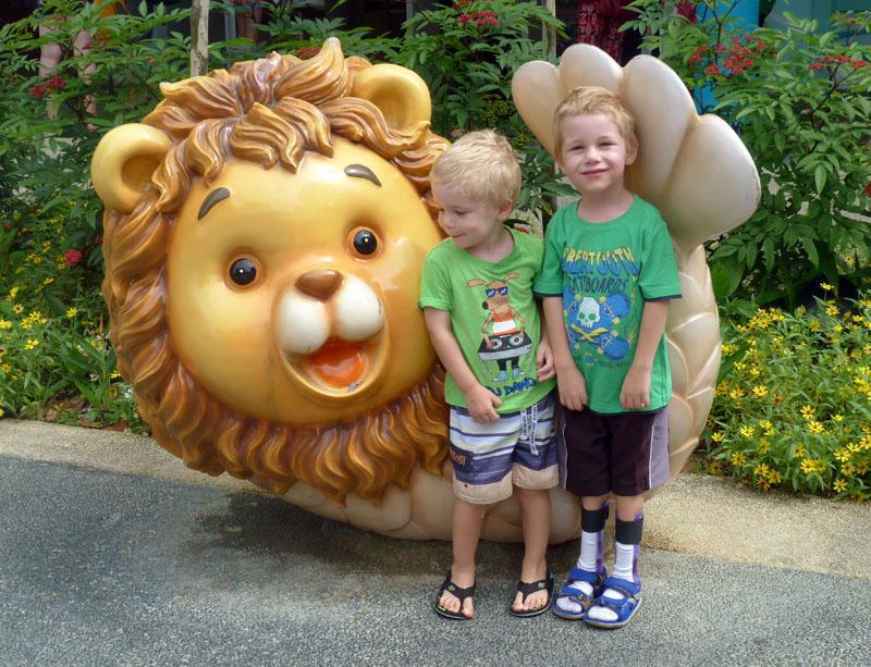 Lions everywhere
