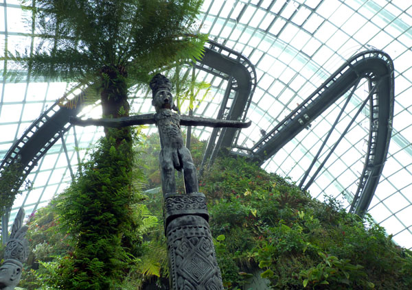 Looking up into the cloud forest