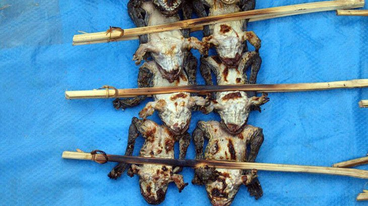 Laos fried frogs on a stick