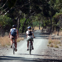 Clare Valley Cycling