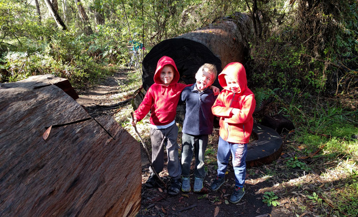Wharncliffe Mill Bush Retreat
