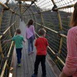 Bridge to the Maze