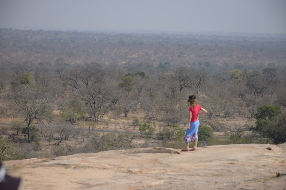 Olive and the view from a rock in Kruger