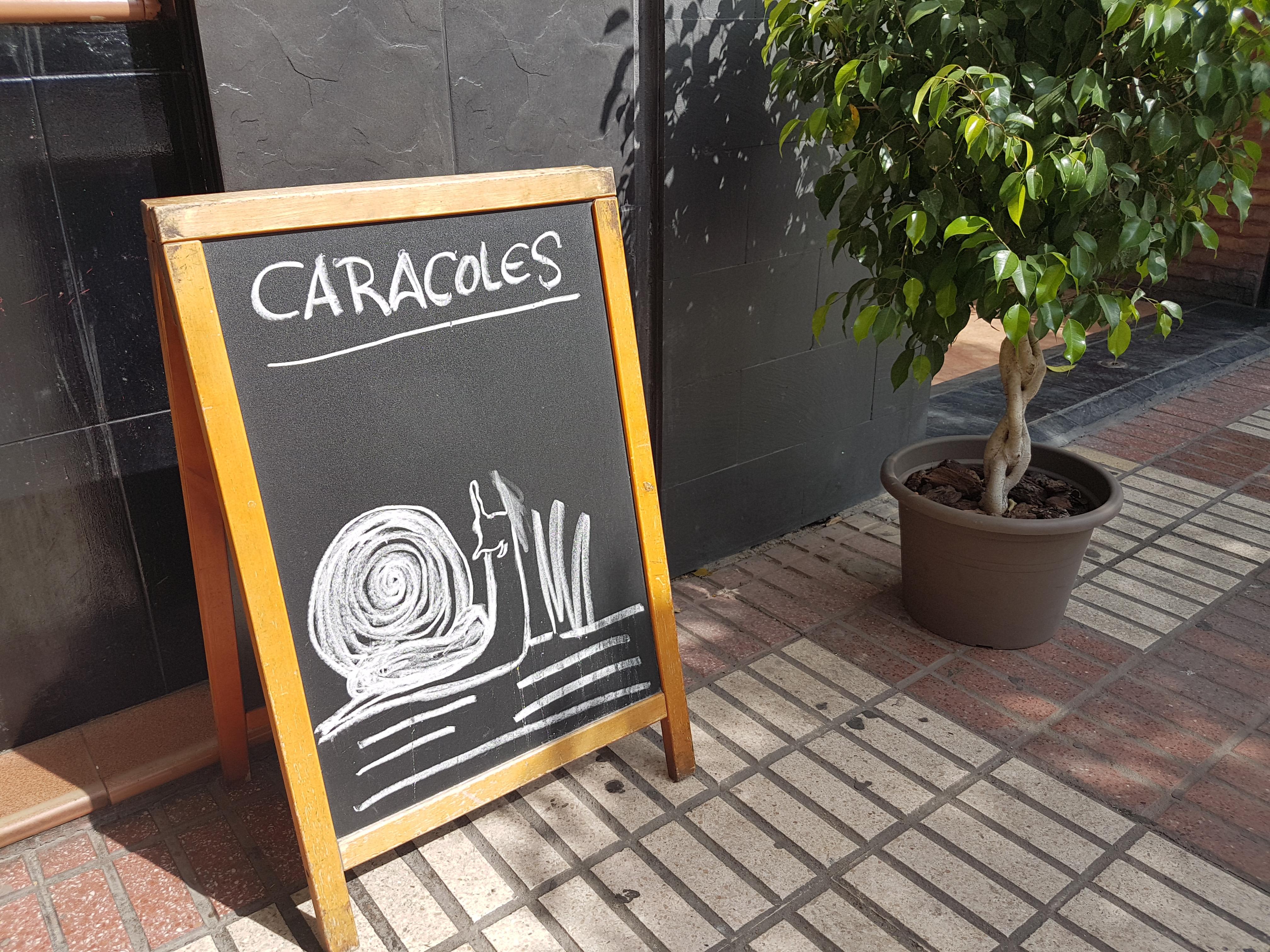 Snails (caracoles) for sale