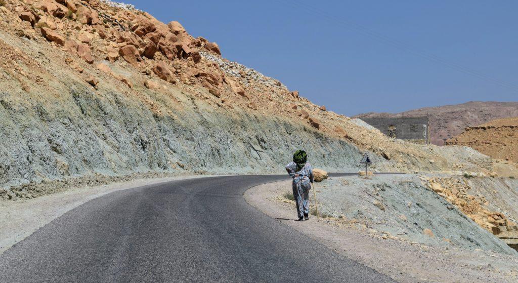 Life in the barren landscape