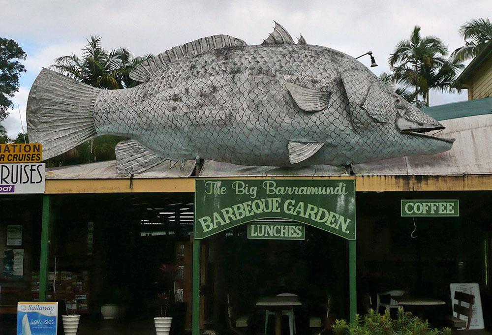 Big Barramundi in Queensland