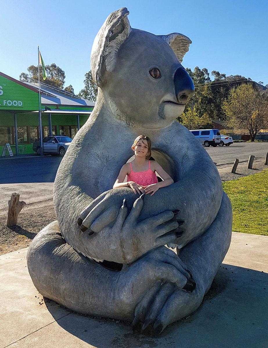 big koala Gundagai