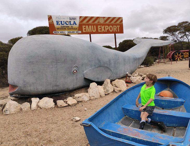 whale eucla big thing