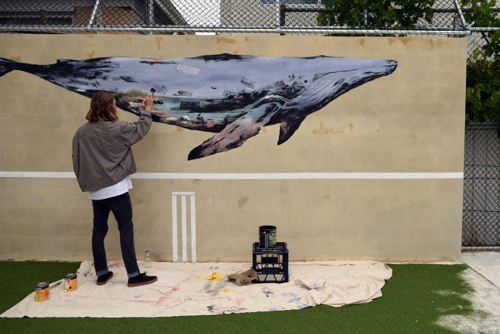 school whale
