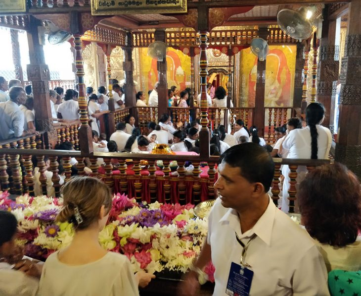 Kandy Tooth Relic