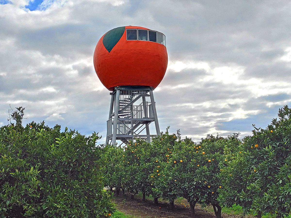 The Big Orange in Harvey WA
