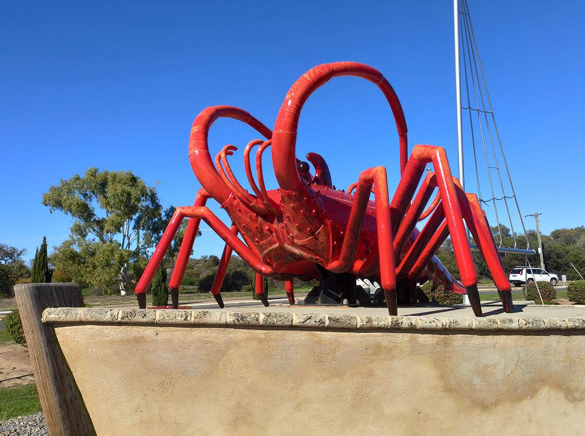 WA's Big Lobster
