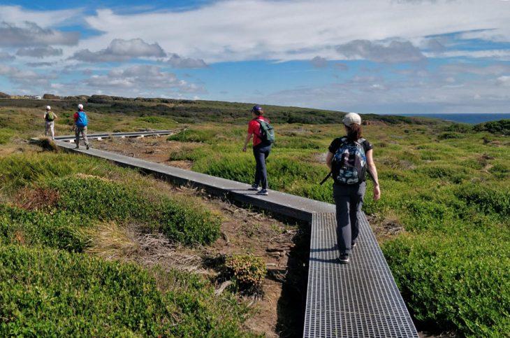 Cape to Cape Walk