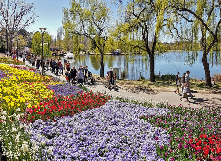 Floriade Fields of Flowers