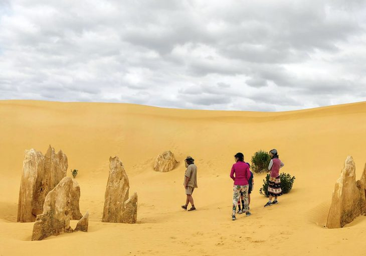 Nambung Pinnacles Tour Cervantes