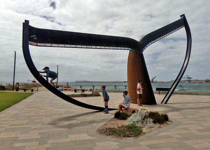 Esperance Whale Tail
