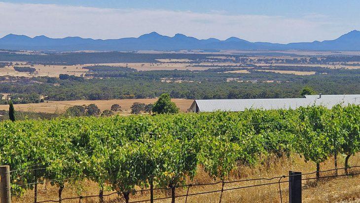 Stirling Range View