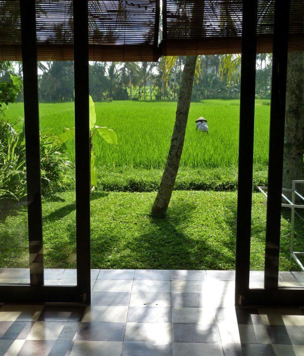 T-House Ubud Bali