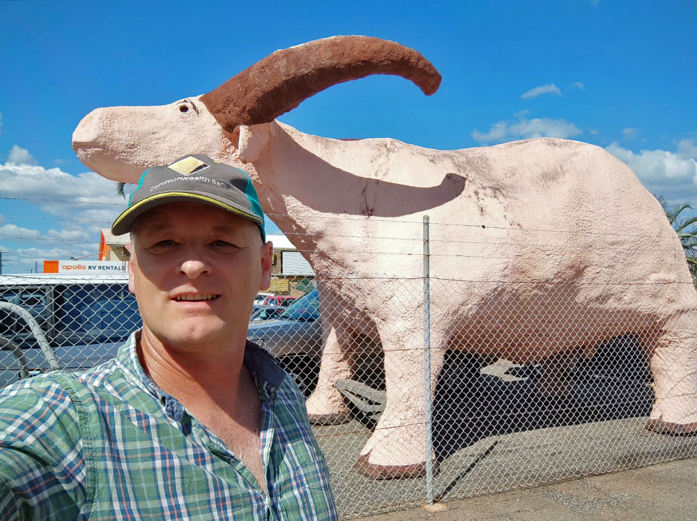 Big Buffalo at Winnellie