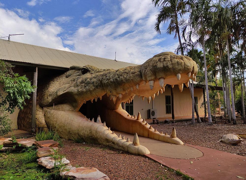 Big Croc Head Broome