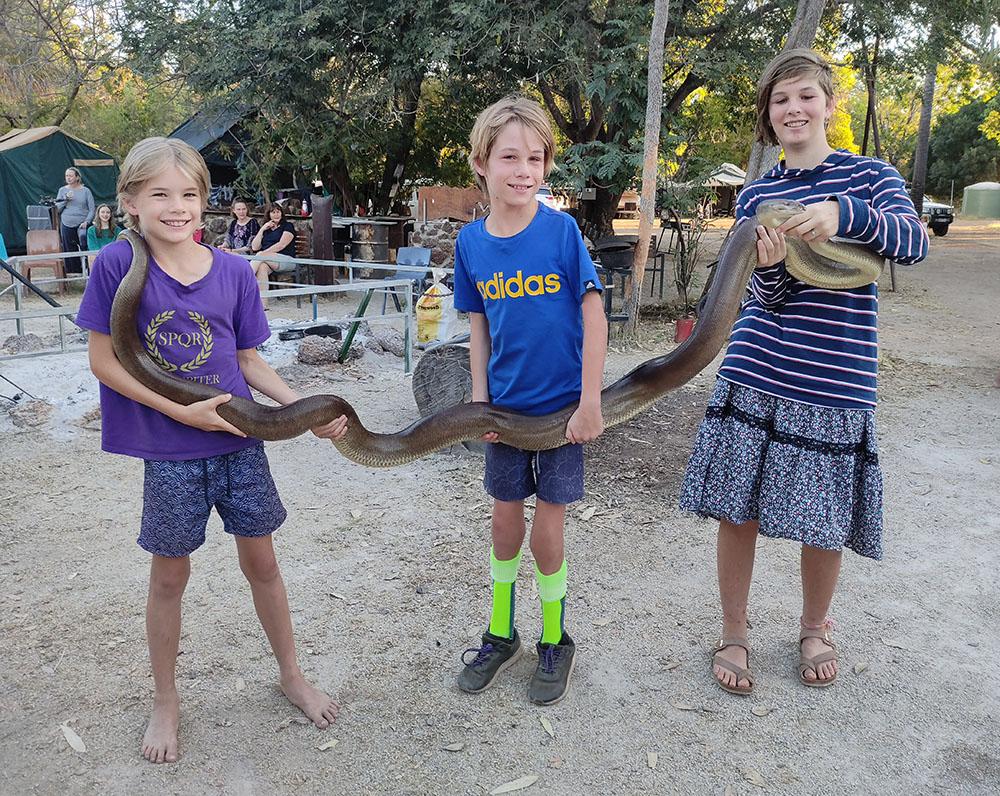 Snake at Little Roper